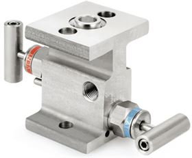 Ham-Let® Astava 2 way direct mount manifolds with Indanc
