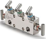 Ham-Let Astava 5 Way Remote Mount Manifold 50A15