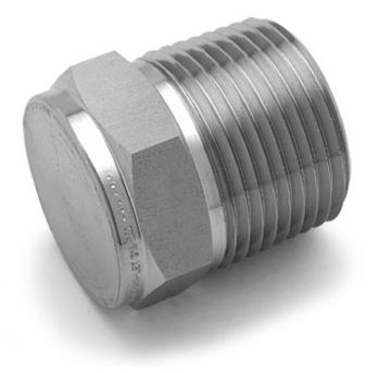 Ham-Let® Pipeline stainless steel pipe plug BSPT