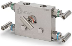 Ham-Let Astava 5 Way Remote Mount Manifold NPT connection